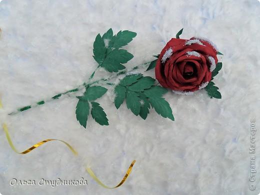 Лежала роза на снегу... фото 2
