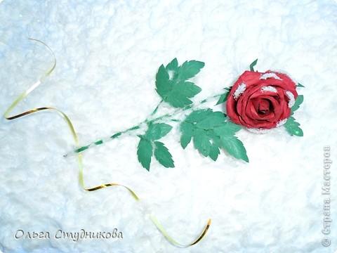 Лежала роза на снегу... фото 3