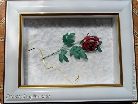 Лежала роза на снегу... фото 5
