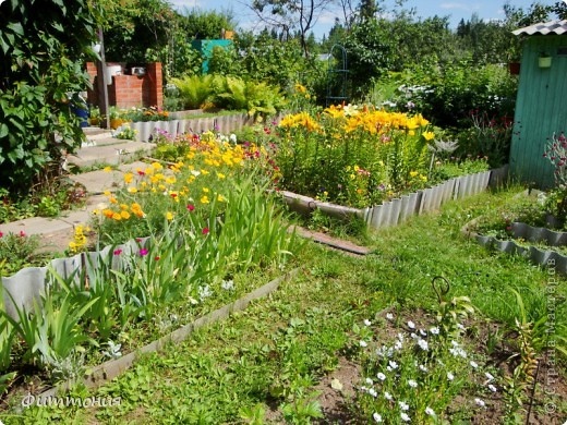 Цветы в саду страна мастеров