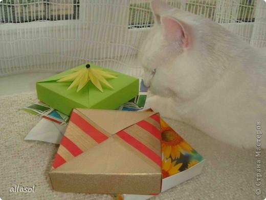 Здравствуйте! Вот пополнила свою коллекцию коробочек. Коробочку нашла в книге Афонькиных.  фото 22