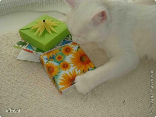 Здравствуйте! Вот пополнила свою коллекцию коробочек. Коробочку нашла в книге Афонькиных.  фото 23