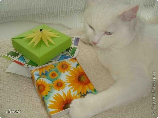 Здравствуйте! Вот пополнила свою коллекцию коробочек. Коробочку нашла в книге Афонькиных.  фото 24