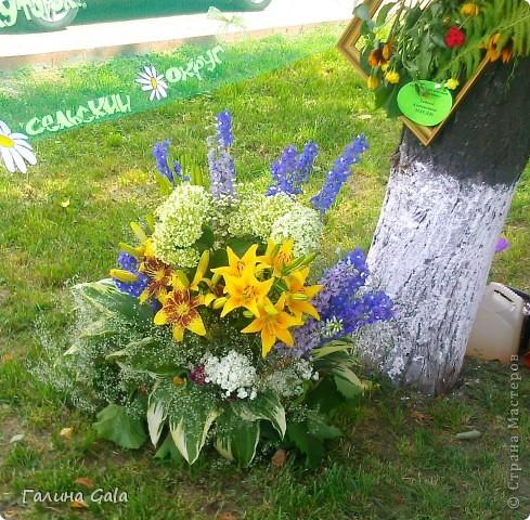 В нашем городе Муроме в это лето проходило два праздника.День семьи, любви и верности 8 июля и День города 6 августа. Это сборный фоторепортаж с обоих праздников.  Ромашки- символ Дня семьи фото 2