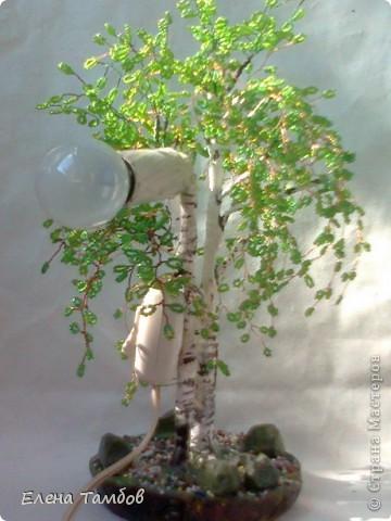 Наш дом со всех сторон окружают взрослые, высокие, раскидистые берёзы. Я очень люблю эти деревья, поэтому сотворила прошлой осенью зелёную красавицу. Очень хотелось продлить лето. Мне показалось скучно сделать просто дерево - поделку, поэтому я добавила  второй ствол  и обычную лампочку. фото 1