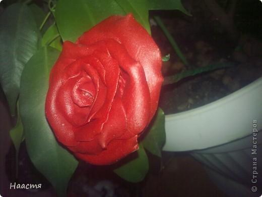 Холодный фарфор.Моя первая роза, появилась благодаря местным мастерицам этой страны)))Kukushechka и Олеся Ф. - спасибо вам! фото 2