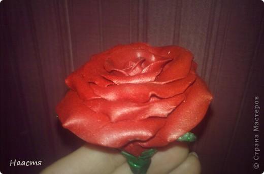 Холодный фарфор.Моя первая роза, появилась благодаря местным мастерицам этой страны)))Kukushechka и Олеся Ф. - спасибо вам! фото 3