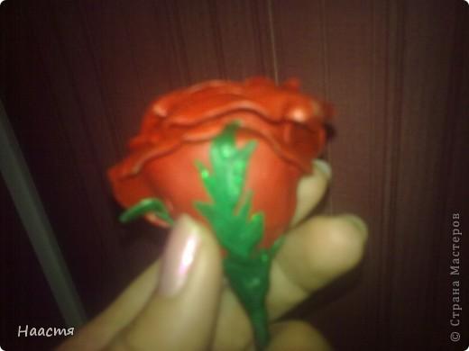 Холодный фарфор.Моя первая роза, появилась благодаря местным мастерицам этой страны)))Kukushechka и Олеся Ф. - спасибо вам! фото 4