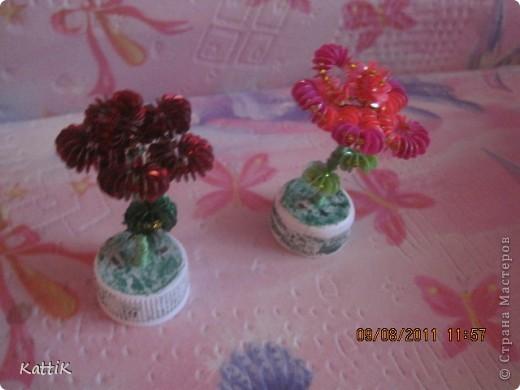 Цветики фото 2