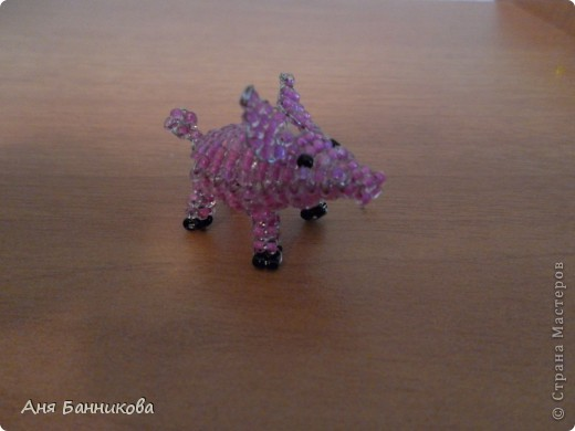 Божья коровка . фото 8