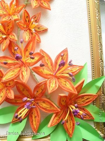 И еще лилии - квиллинг фото 3