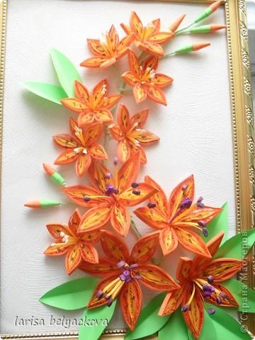 И еще лилии - квиллинг фото 1