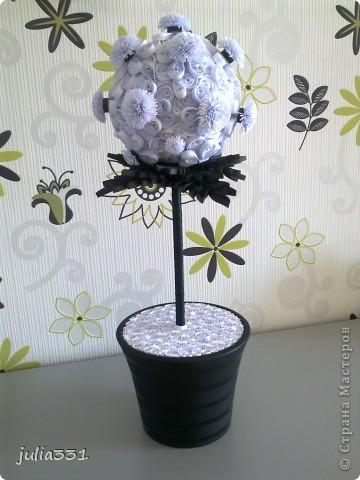 """Европейское дерево - """"Черно-белое"""" + открытка фото 1"""