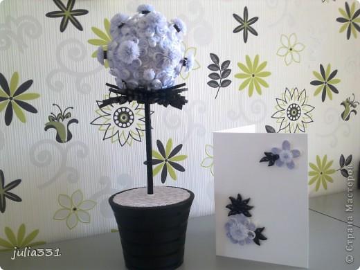 """Европейское дерево - """"Черно-белое"""" + открытка фото 2"""