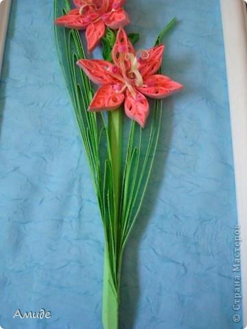 Мне нравится квиллинг. Моя первая работа посвящена красивым цветам лета - гладиолусам. фото 5