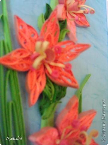 Мне нравится квиллинг. Моя первая работа посвящена красивым цветам лета - гладиолусам. фото 2