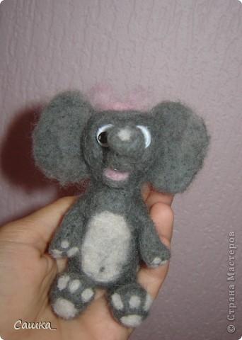 Слоня) фото 3