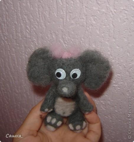 Слоня) фото 2