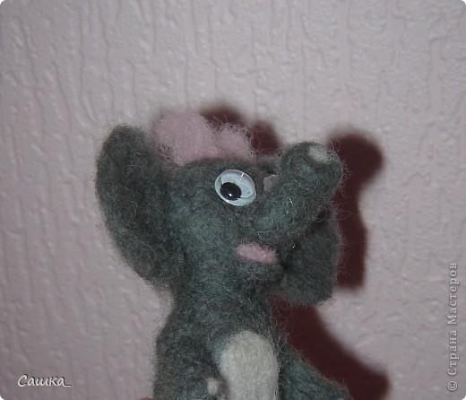 Слоня) фото 1
