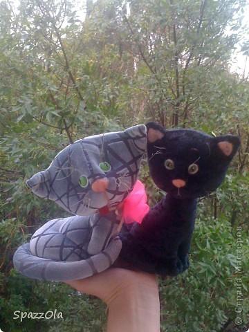 вот такой котенок серый родился вчера, а сегодня приехал на каток и тут же нашел себе новую хозяйку. но отправится он к новой маме только послезавтра, надо немного принарядиться и попрощаться с кошечкой фото 6
