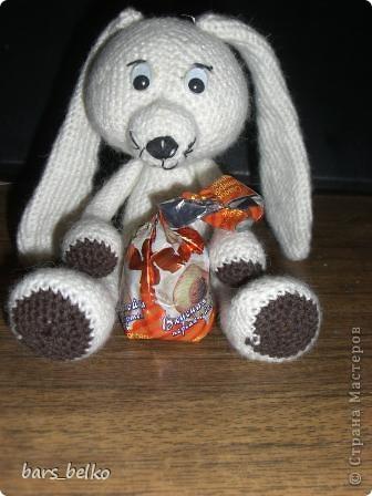Кролик Дима фото 3