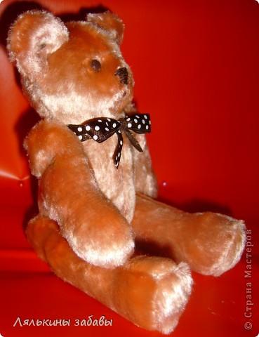 Мишка,настоящий-плюшевый. рост 20 см. лапы утяжелены металлическим гранулятом,тяжеленький ,плотненький))) фото 2