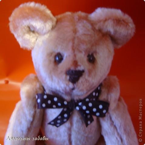 Мишка,настоящий-плюшевый. рост 20 см. лапы утяжелены металлическим гранулятом,тяжеленький ,плотненький))) фото 5
