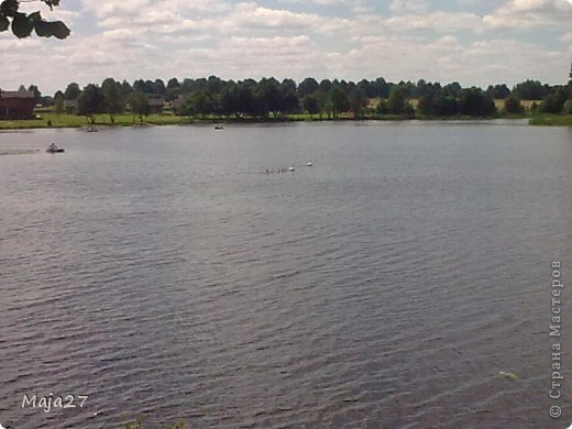 Вот какую семью красавцев мне удалось снять на реке. фото 7