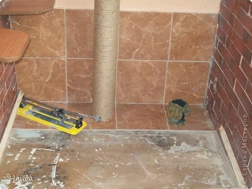 нужно сделать одновременно туалет для кошек и лазалки дано-лоджия 6м длиной и 1,2 шириной и 14 кошек убрала старую отделку со стены и потолка,отодрала старый линолеум, его все равно менять надо было. общая площадь угла 1,2х1,2 м полки повесила в шахматном порядке, как лесенку фото 3