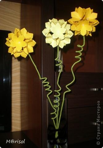 Кусудамы превратились в цветы...  Евгеша, спасибо за идею https://stranamasterov.ru/node/143987  фото 1