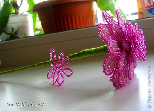 Подарок мамочки на день рождения!:) Ей очень понравился)) фото 2