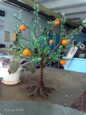 попробовала сделать дерево с листьями из пластиковой бутылки, как видела уже ранее на этом сайте, но так как делала первый раз, получилось корявенько, не судите строго))))))))))))))0