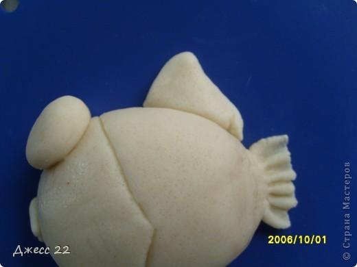 Такие маленькие рыбки, эти две уместились в рамке формата 10х15. фото 15