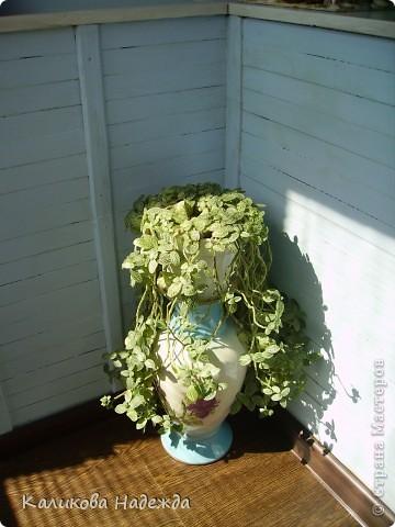 Плавно переходим к декупажу кашпо и цветам. Цветы всюду!Разные! Начало репортажа здесь:    http://stranamasterov.ru/node/225335 фото 8