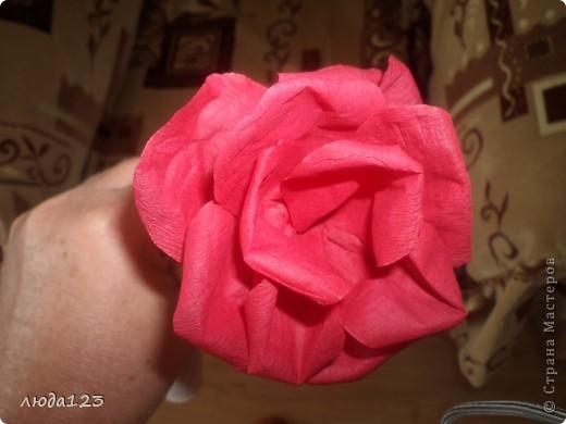 Розы из бумаги Увидела у Ирины Хохловой розы так мне захотелось сделать и для себя.Конечно у меня они не большие  ноя очень старалась. фото 3