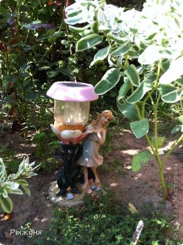 Продолжаю знакомить любителей  садово-огороднического творчества с цветением нового и прекрасного. Решила показать огород-сад с птичьего полета))))) Да , нет, не переживайте, только с высоты второго этажа ( мансарды) дачного домика фото 11