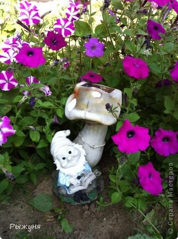 Продолжаю знакомить любителей  садово-огороднического творчества с цветением нового и прекрасного. Решила показать огород-сад с птичьего полета))))) Да , нет, не переживайте, только с высоты второго этажа ( мансарды) дачного домика фото 14