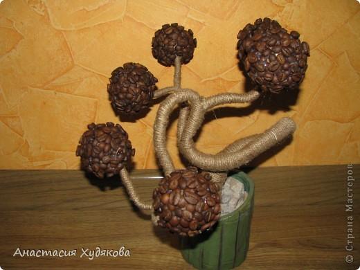 В основе этого кофейного чуда лежит дереве Бонсай.  Это дерево придумала не я, просто увидела в интернете, и решила сделать. Для  его создания вам понадобится: провод;  пенопласт;  кофе в зёрнах;  нитки;  бечёвка;  клей  момент кристалл;  гипс;  горшок;  малярный скотч;  декоративные камни. фото 7