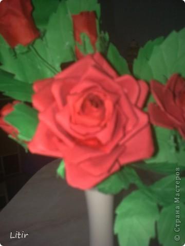 Решила попробовать что-то кроме квиллинга. Розы делала по МК ASTORIA - http://fotki.yandex.ru/users/asti-n/album/157207/ . С нетерпением жду ваших комментариев. фото 3