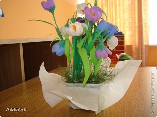 Весенние цветы. фото 2