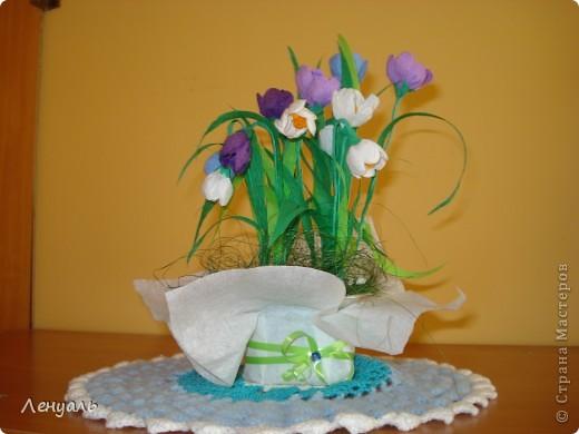 Весенние цветы. фото 3