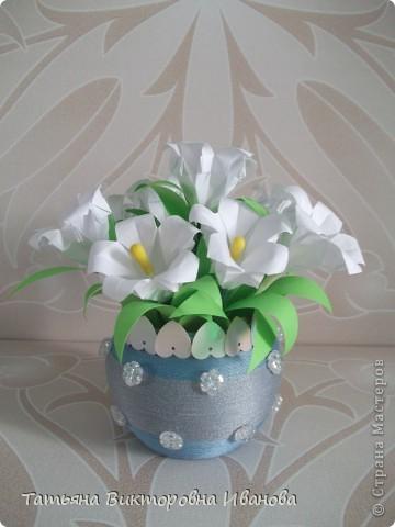 Здравствуйте все любители цветов! Цветы всегда приносят радость и хорошее настроение в любой дом. Но срезанные цветы рано или поздно вянут, а мои цветочки останутся цветущими всегда. Спасибо всем мастерицам, которые вдохновляют нас такой красотой. Эти цветочки я сделала по этому МК: http://stranamasterov.ru/node/81591?c=favorite  фото 4