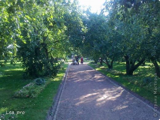 Небольшая прогулка. Парк Коломенское Москва фото 19