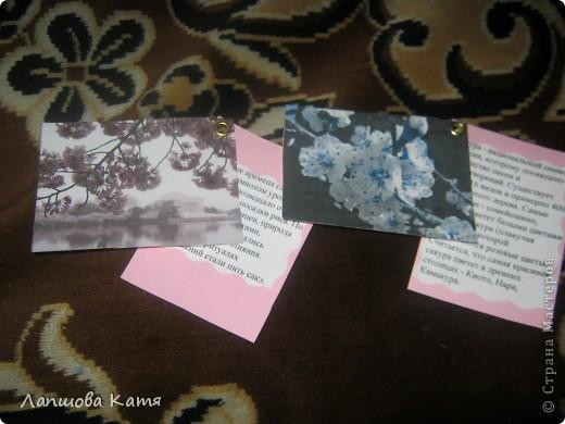 Я сделала АТСки с интересными сведениями  о сакуре(Японской вишне). Здесь 1-2.№2 занят.  фото 1