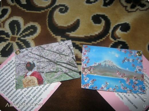 Я сделала АТСки с интересными сведениями  о сакуре(Японской вишне). Здесь 1-2.№2 занят.  фото 2