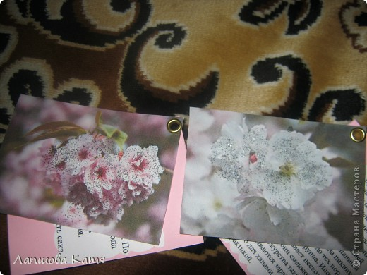 Я сделала АТСки с интересными сведениями  о сакуре(Японской вишне). Здесь 1-2.№2 занят.  фото 9