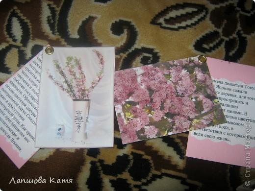 Я сделала АТСки с интересными сведениями  о сакуре(Японской вишне). Здесь 1-2.№2 занят.  фото 8