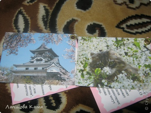 Я сделала АТСки с интересными сведениями  о сакуре(Японской вишне). Здесь 1-2.№2 занят.  фото 10