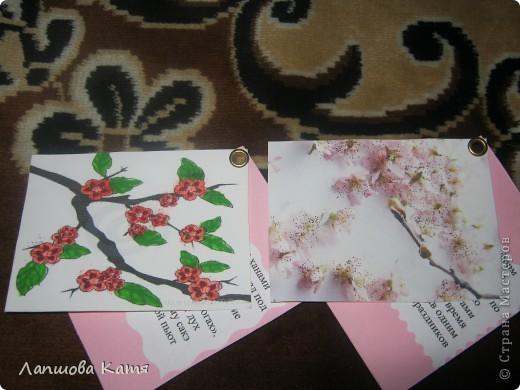 Я сделала АТСки с интересными сведениями  о сакуре(Японской вишне). Здесь 1-2.№2 занят.  фото 11