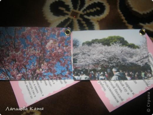 Я сделала АТСки с интересными сведениями  о сакуре(Японской вишне). Здесь 1-2.№2 занят.  фото 12